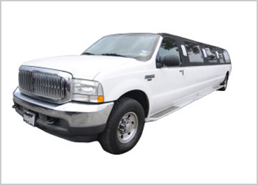 16 Pax Excursion Limo