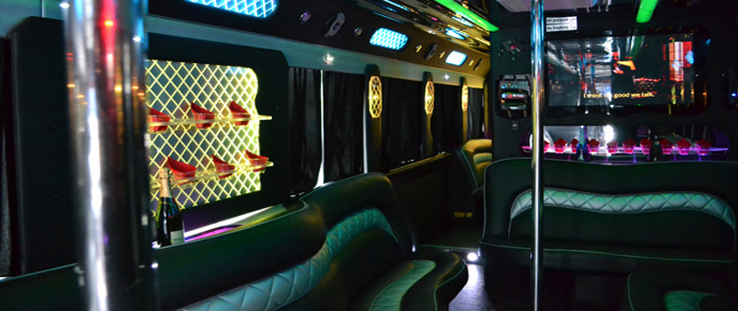 VIP Party Bus Interior Light
